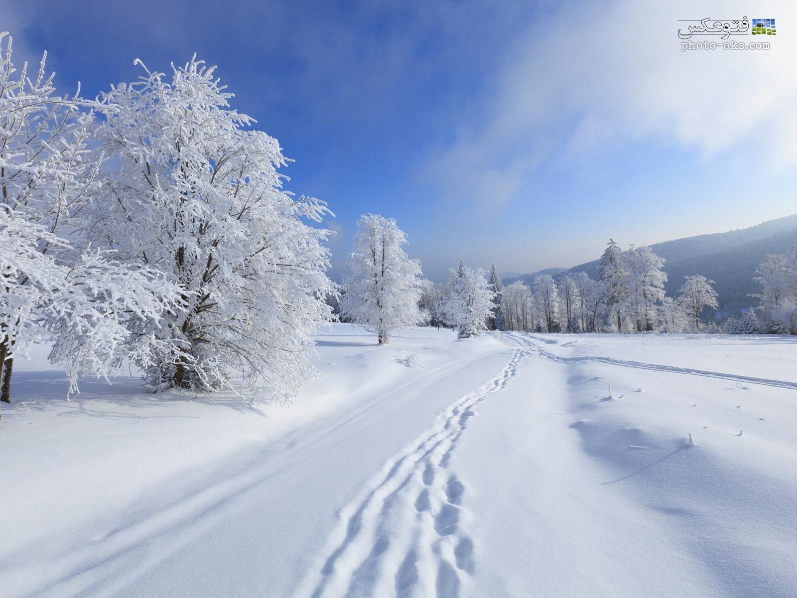 بارش برف در ارتفاعات استان زنجان