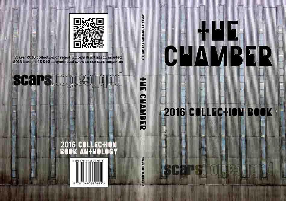 دانلود فیلم The Chamber 2016