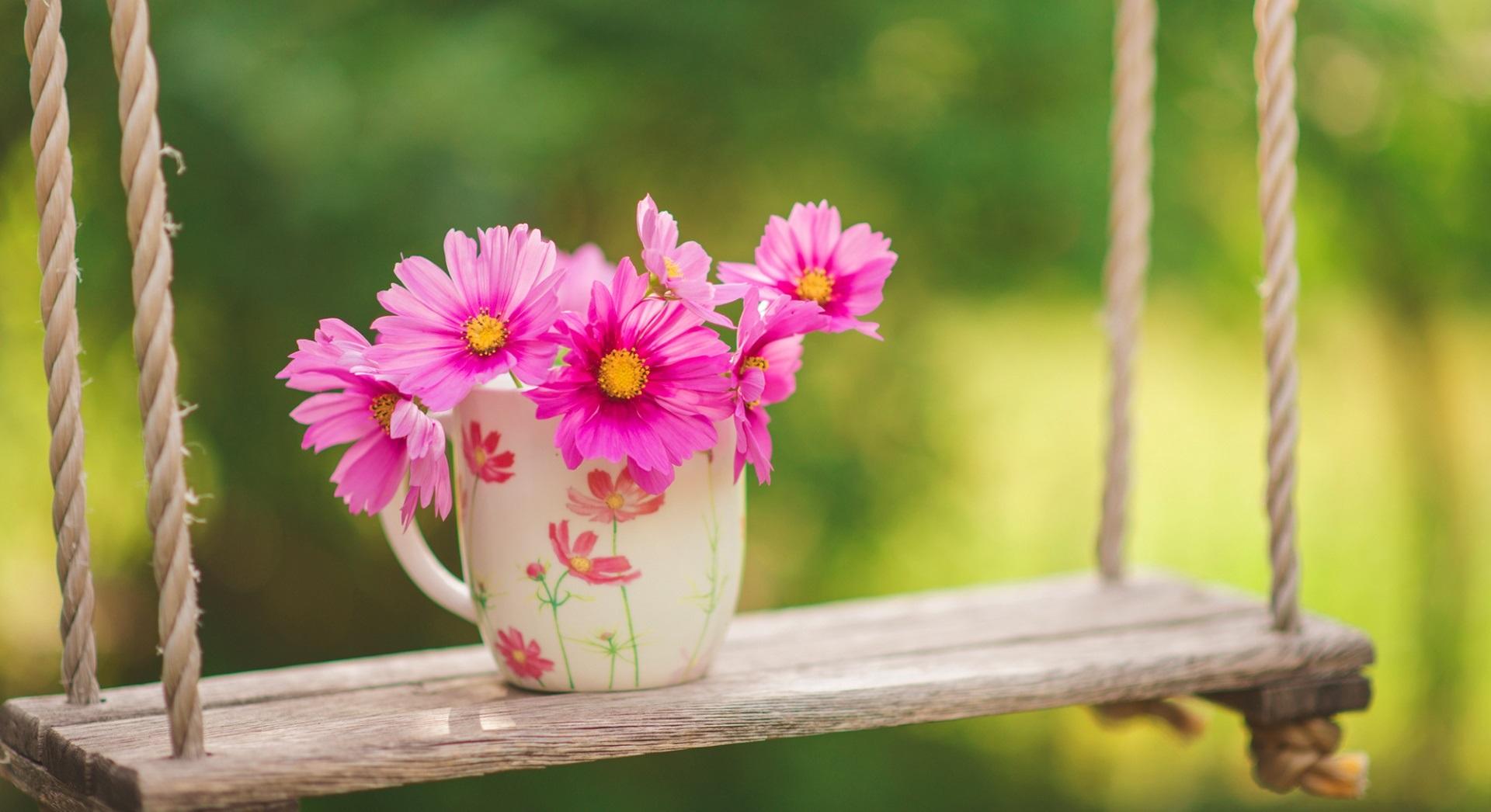 ضرب المثل های زیبای بهار