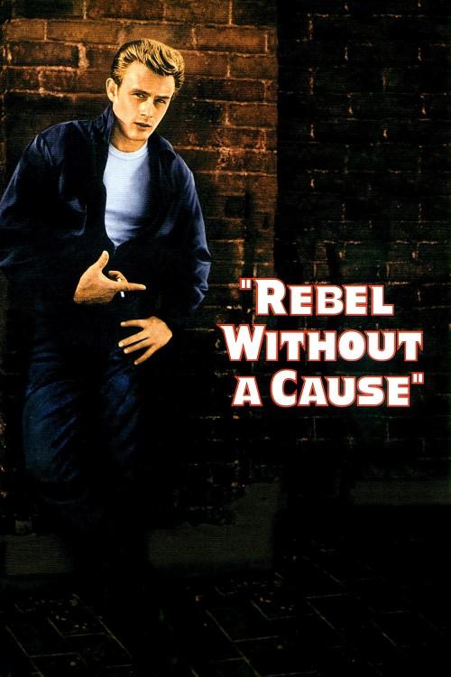 دانلود دوبله فارسی فیلم شورش بدون دلیل Rebel Without a Cause 1955