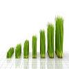 بازگشایی حق تقدمی که سهم رشد 70 درصدی داشته