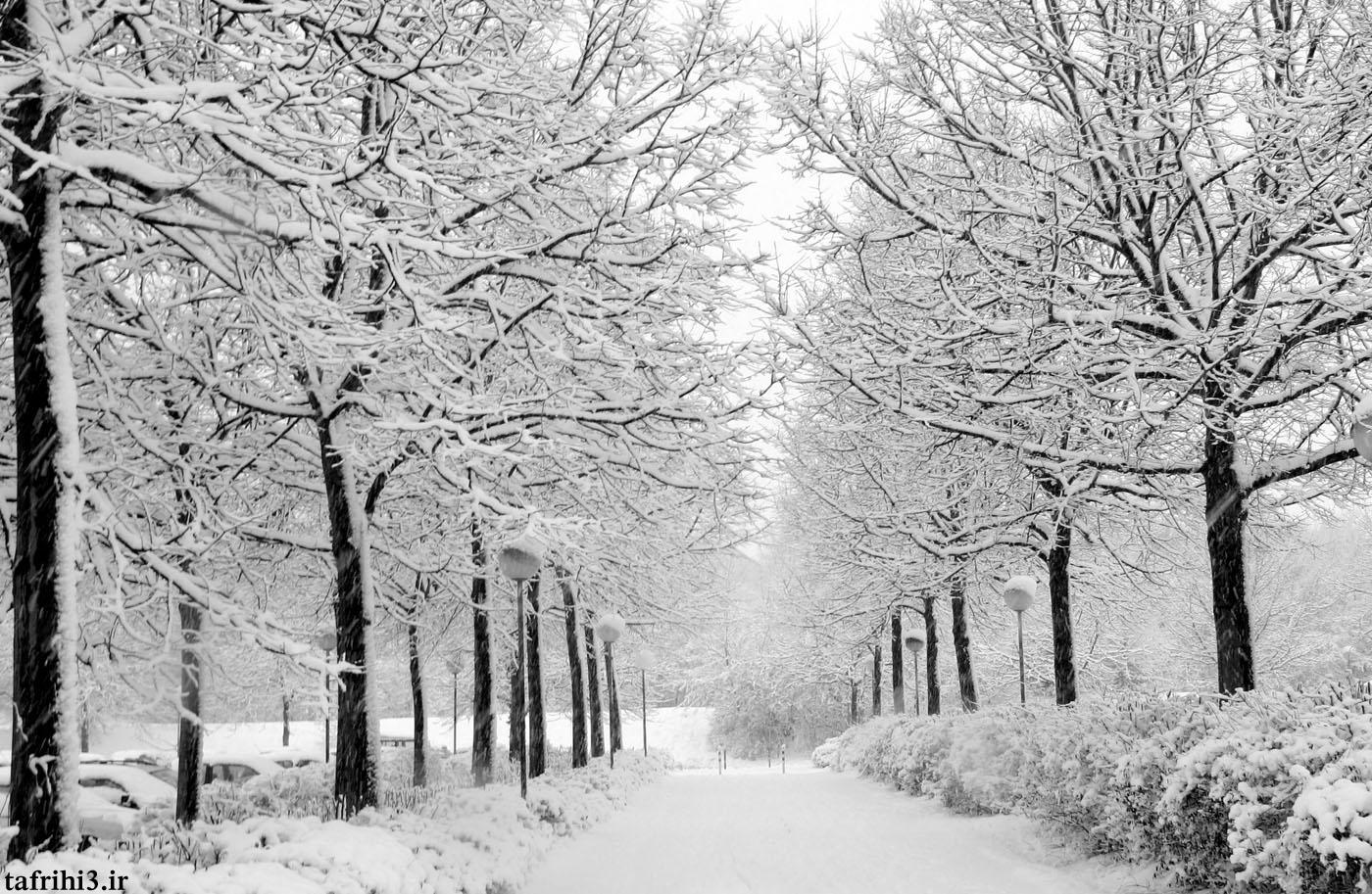تصاویر متحرک فصل زمستان