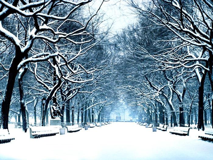 تصویر فصل زمستان