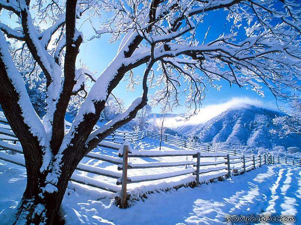تصاویر بسیار زیبا از فصل زمستان