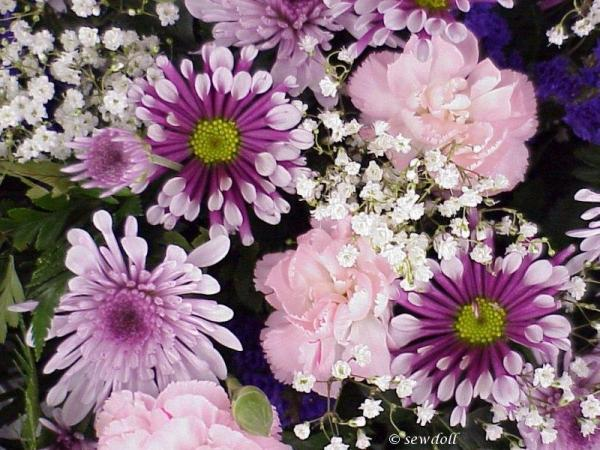 تصاویر گل های متحرک