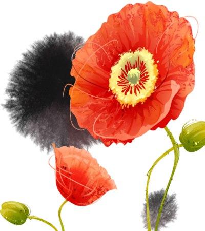 تصاویر فانتزی گل ها