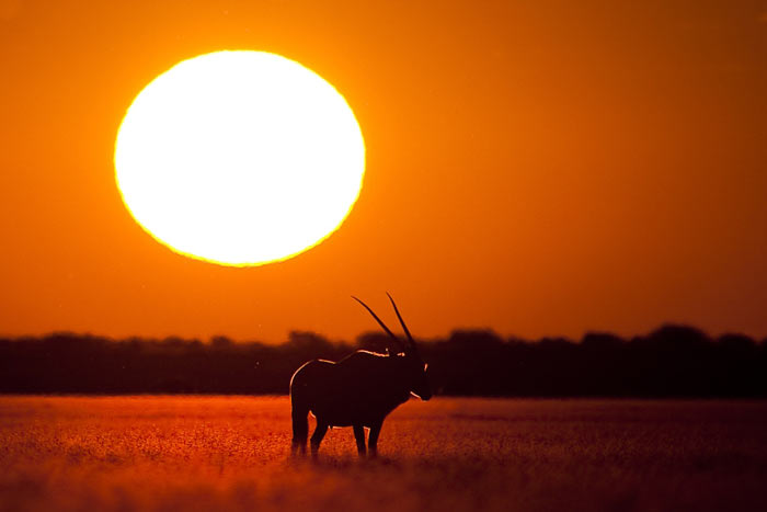 دانلود تصاویر غروب آفتاب