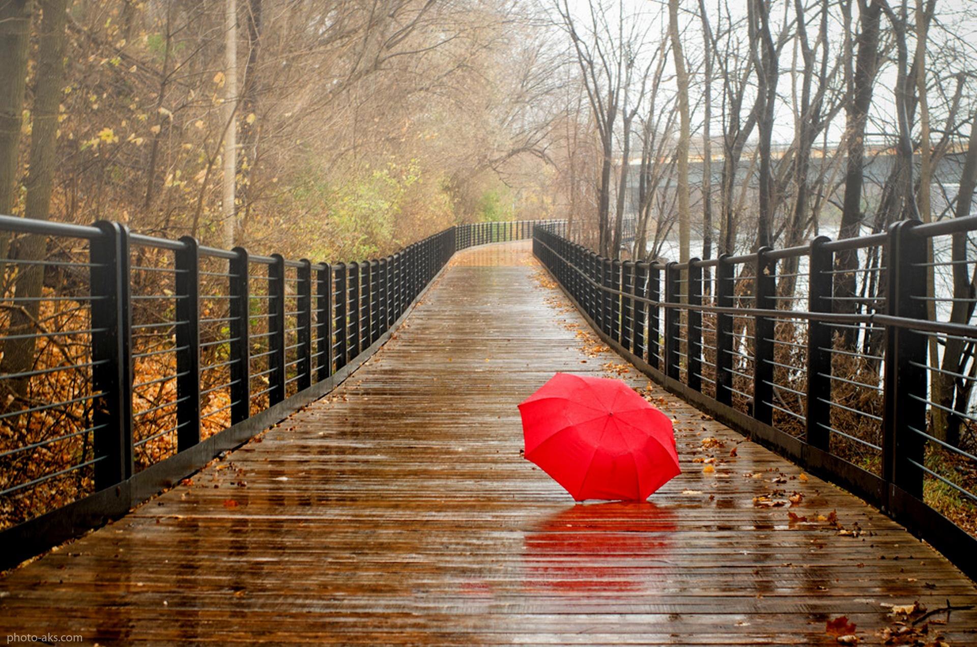 تصاویر باران پاییزی