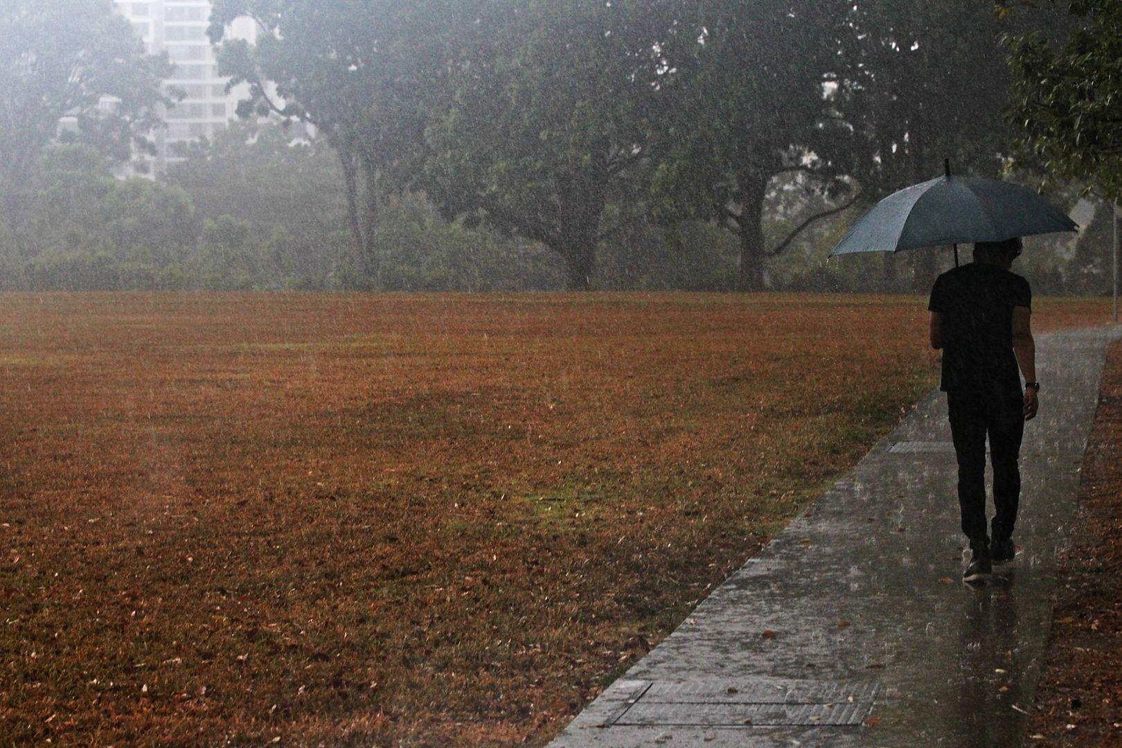 عکس باران آمدن