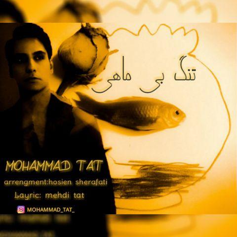 دانلود آهنگ محمد تات به نام تنگ بی ماهی
