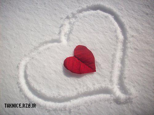 عکس قلب جدید برای پروفایل واتس اپ , وایبر ، لاین,عکس آواتار قلب جدید برای پروفایل واتس اپ , وایبر ، لاین جدید,عکس آواتار قلب برای اینستاگرام,عکس آواتار عاشقانه,عکس آواتار قلب جدید برای پروفایل واتس اپ , وایبر , اینستاگرام جدید,عکس پروفايل قلب براي وايبر و اينستاگرام,بهترين عکس پروفايل قلب براي وايبر و اينستاگرام,جديدترين عکس پروفايل قلب براي وايبر و اينستاگرام,دانلود عکس پروفايل قلب براي وايبر و اينستاگرام,مشاهده جديد ترين عکس پروفايل قلب براي وايبر و اينستاگرام,عکس پروفايل قلب براي وايبر و اينستاگرام,تصوير جديد پروفايل قلب براي وايبر و اينستاگرام,عکس اين ماه پروفايل قلب براي وايبر و اينستاگرام,اخبار جديد در باره عکس پروفايل قلب براي وايبر و اينستاگرام,تصوير کيفيت دار پروفايل قلب براي وايبر و اينستاگرام,عکس پروفايل قلب براي وايبر و اينستاگرام,عکسهای پروفايل قلب براي وايبر و اينستاگرام,دانلود عکس هاي  پروفايل قلب براي وايبر و اينستاگرام,دانلود عکس پروفايل قلب براي وايبر و اينستاگرام,عکس پروفايل قلب براي وايبر و اينستاگرام,عکس پروفایل قلب وایبر,عکس آواتار واتس اپ,عکس پروفایل فیس بوک,عکس پروفایل قلب اینستاگرام,عکس آواتار قلب برای پروفایل اینستاگرام , واتس اپ , وایبر,عکس پروفایل قلب برای اینستاگرام,عکس آواتارقلب اینستاگرام,عکس پروفایل جدید واتس اپ,عکس پروفایل قلب وایبر