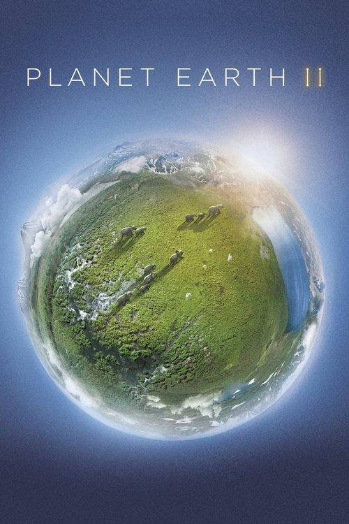 دانلود دوبله فارسی مستند زمین سیاره شگفت انگیز Planet Earth II