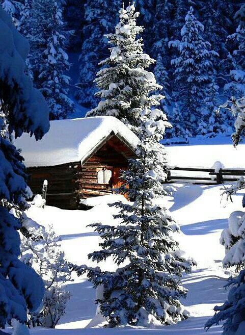 آهنگ زمستان از سیمین غدیری