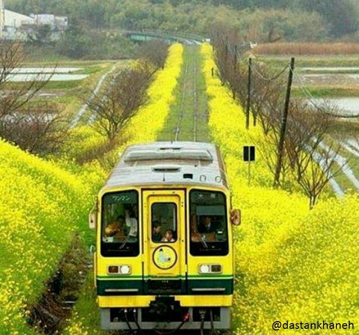 قطار زندگی