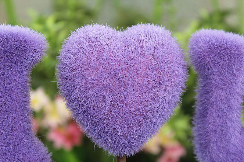 گلدان عشق طرح I*U