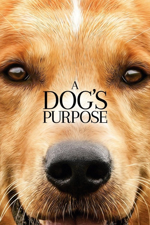 دانلود رایگان فیلم A Dog's Purpose 2017