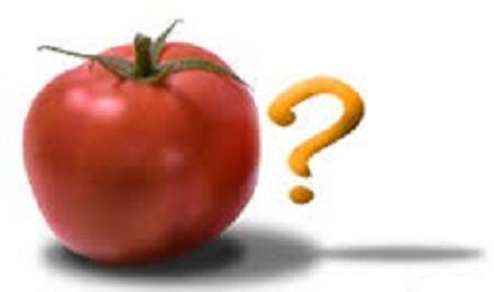 سوالات مهم در مورد کشت گوجه فرنگی