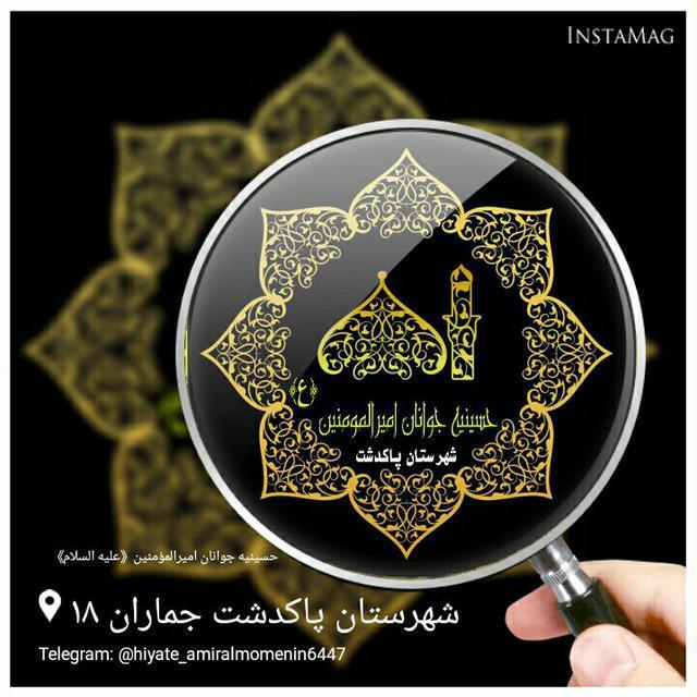 کانال تلگرام حسینیه جوانان امیرالمومنین (ع)