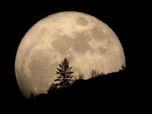 سلام بر ماه بدر...