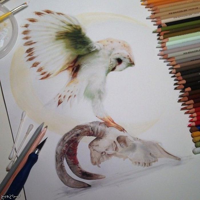 مدل نقاشی مداد رنگی3