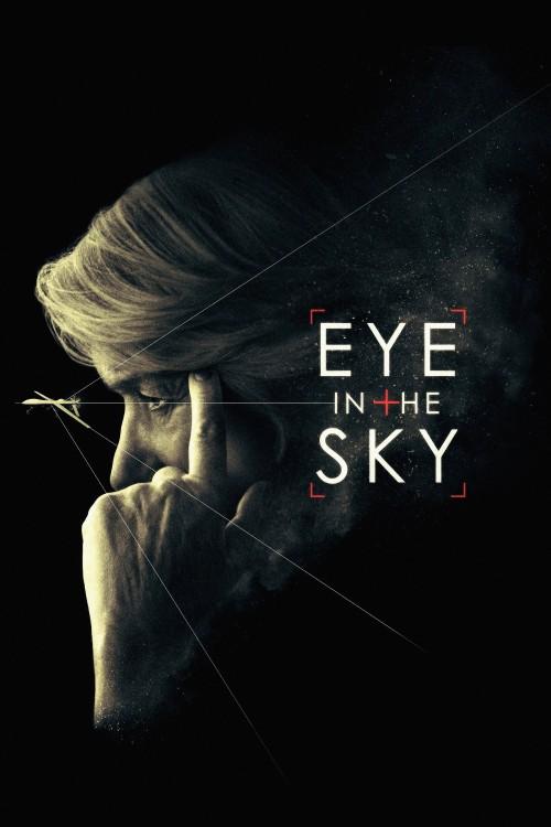 دانلود دوبله فارسی فیلم چشمی در آسمان Eye in the Sky 2015