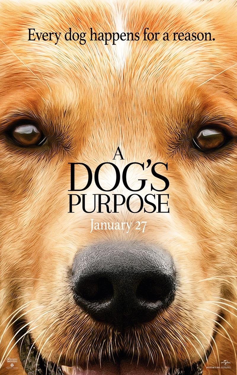 A Dogs Purpose 2017
