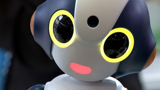 چشمه ای از رویای ژاپن برای آینده در سبیت ۲۰۱۷