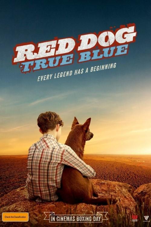 دانلود فیلم Red Dog: True Blue 2016