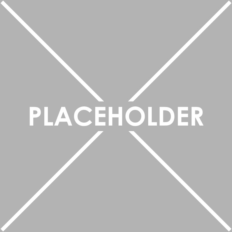آموزش متحرک کردن متن درون placeholder همانند بخش خبرنامه لازین با یک پلاگین ساده جیکوئری