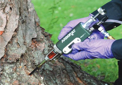 آشنایی با تزریق کود به تنه درختان