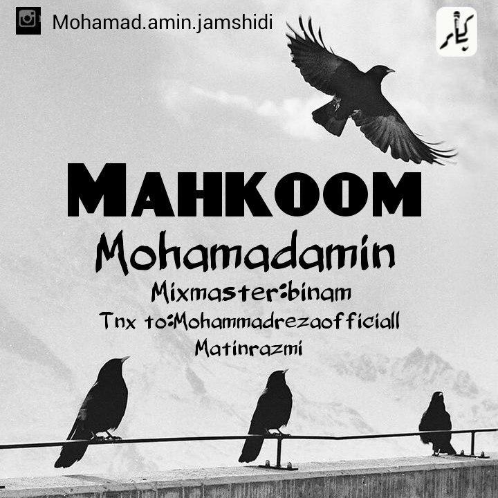 آهنگ محکوم از محمد امین