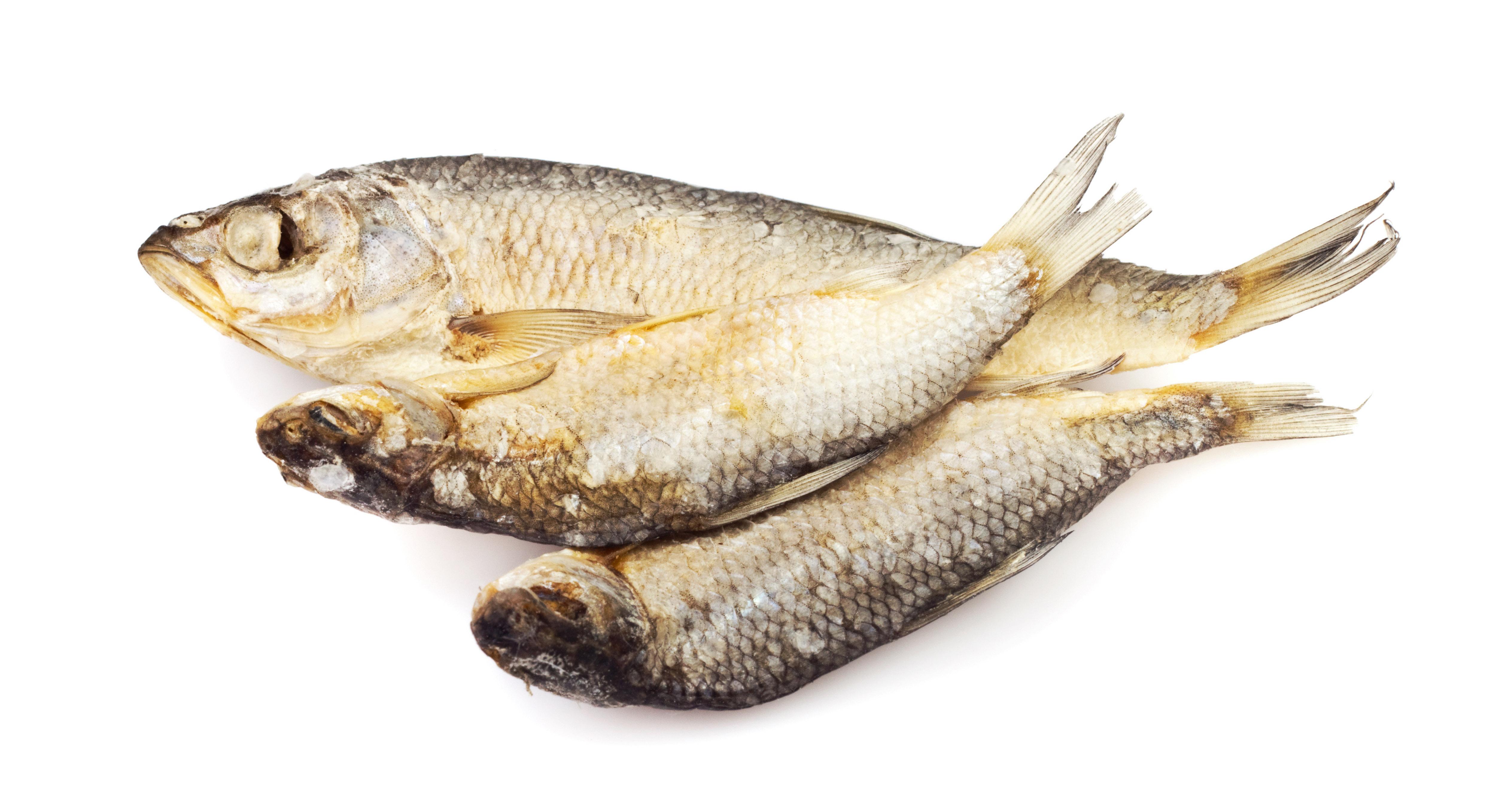 خواص ماهی را بشناسید