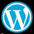 دانلود نرم افزار و افزونه و قالب وردپرس WordPress apk