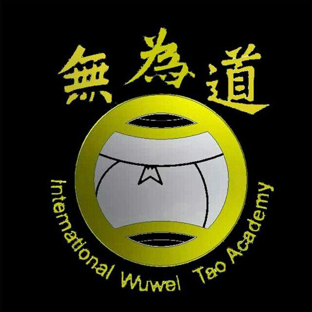 کانال تلگرام هنرهای رزمی وو وی تائو