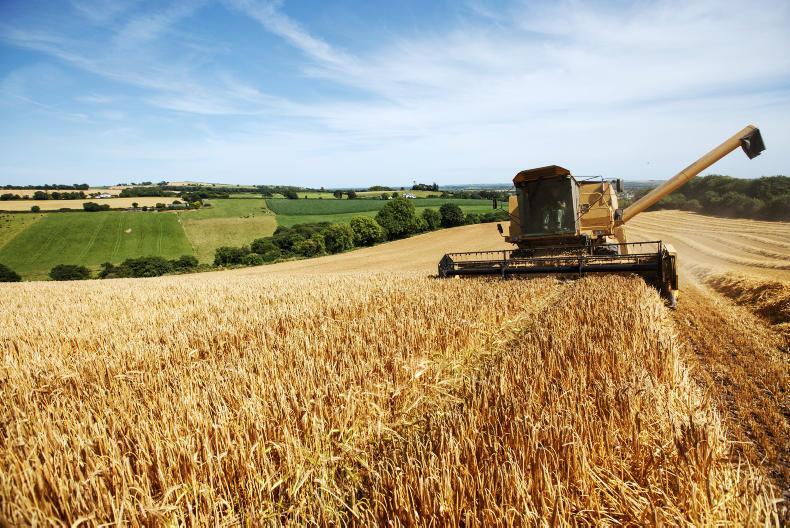 خبر منتخب کشاورزی افزایش 2.3 درصدی قیمت غذا  در جهان در جولای 2017