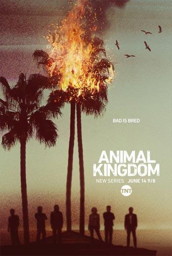 دانلود فصل دوم سریال Animal Kingdom S02 2017
