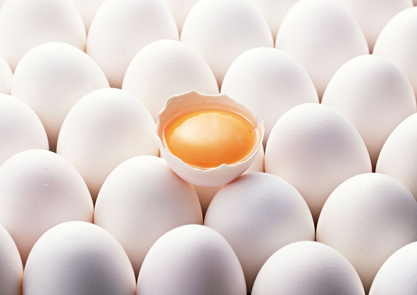 رابطه سلامت مرغ باطلایی بودن زرده تخم مرغ