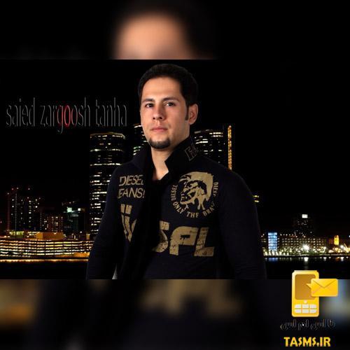 آهنگ جدید سعید زرگوش تنها به نام فرشته خیال