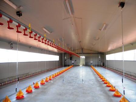 سیستم خنک کننده تبخیری سالن های مرغداری
