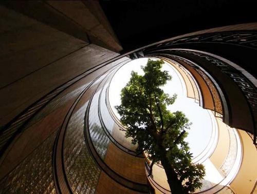 این آپارتمان در تهران بدون قطع کردن حتی یک درخت در اطراف آن ساخته شده است