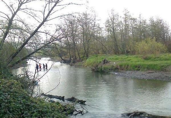 جایگاه و اهمیت رودخانه ها در حیات آبزیان