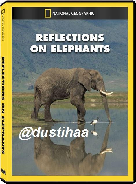 مستندزیبای فیل ها بالینک کاملا رایگان