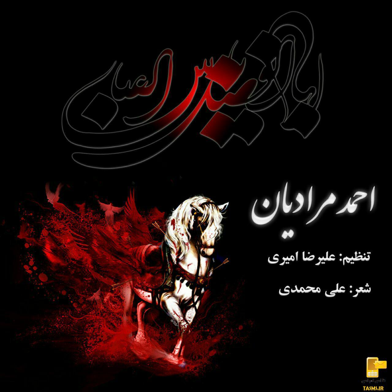 دانلود مداحی جدید احمد مرادیان به نام سرادر بی دست