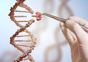 تاثیر ژن خوب در استخدام برخی از بیکاران + صوت