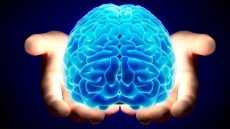 چگونگی تصمیم گیری ذهن انسان