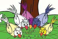 قصه کودکانه اتحاد کبوتران