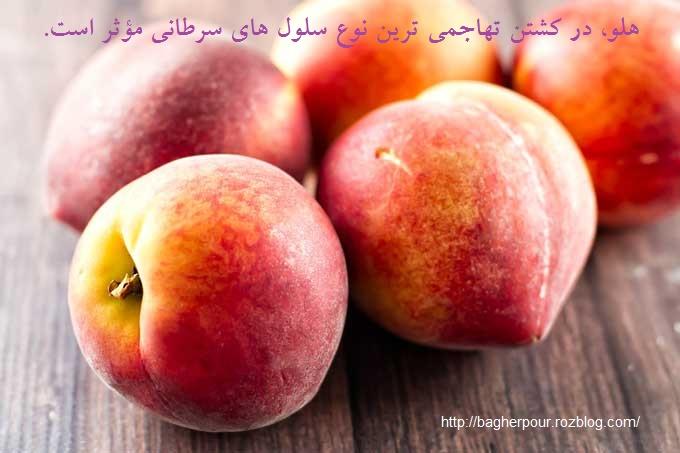 هلــــــــــــــــو...