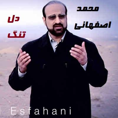 نسخه بیکلام آهنگ دل تنگ از محمد اصفهانی