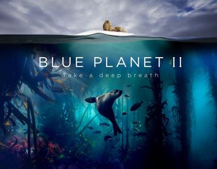 دانلود سریال Blue Planet II با لینک مستقیم
