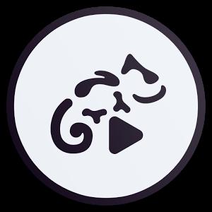 دانلود برنامه Stellio TheGrand Theme v1.1 - تم بسیار زیبا و خاص موزیک پلیر Stellio برای اندروید